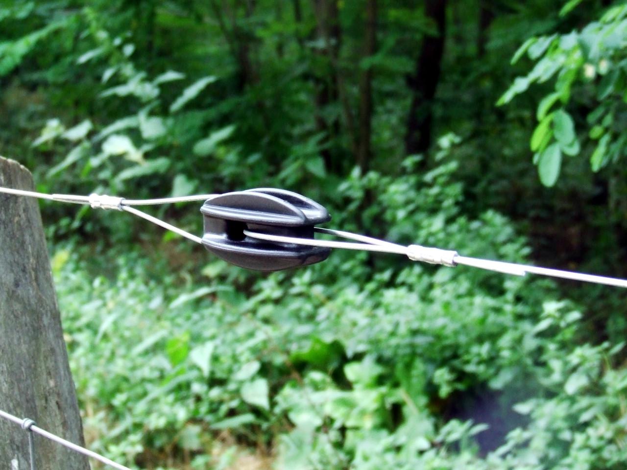 Chemelforest 064